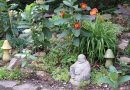 July's Garden Parade to offer inspiration