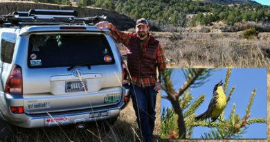 Kirtland's Warbler remains on federal endangered species list in Wisconsin