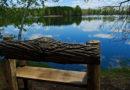 With spring's return, so do Schmeeckle Reserve outdoor programs