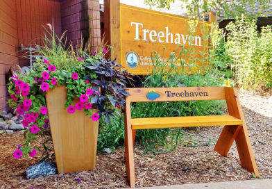 Treehaven offers weekend workshop with Timber Wolf Network
