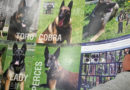 New K-9 calendars hit the press at Spectra Print