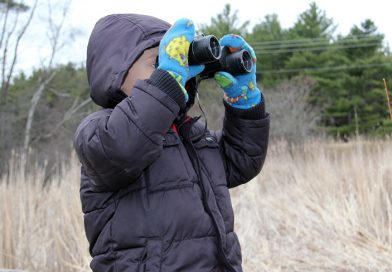 New 'Junior Audubon' program offered at Schmeeckle