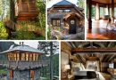 Whiting wellness retreat to feature cottage, 'treehouse-like' suites