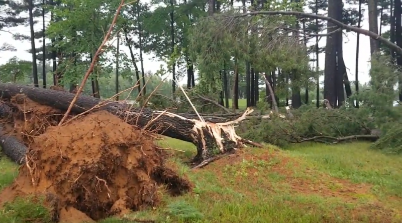 Watch: July 20 storm, aftermath