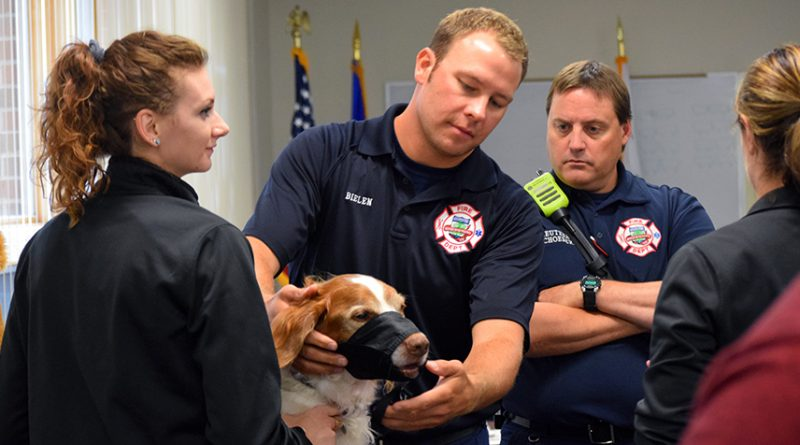 K9 dogs can now count on medical treatment by paramedics, EMTs, police