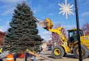 VIDEO: Downtown Christmas Tree installed