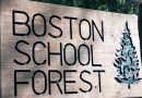 Boston School Forest announces open house