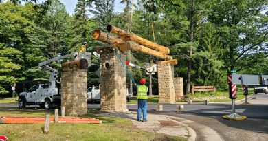 Storm remnants bring new life to park entrance