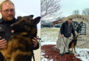 Stevens Point K9 sergeant earns trainer certification