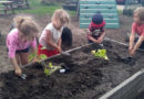 UWSP childcare center honored as 'Green Ribbon' school