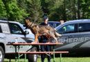 Police & Sheriff calls, June 3-6