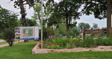 With strong Council ties, Emerson Park group gets $60K from city